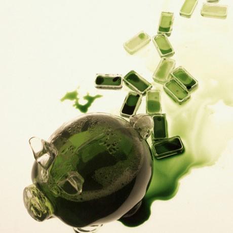Bacterial Money - Raphael Kim